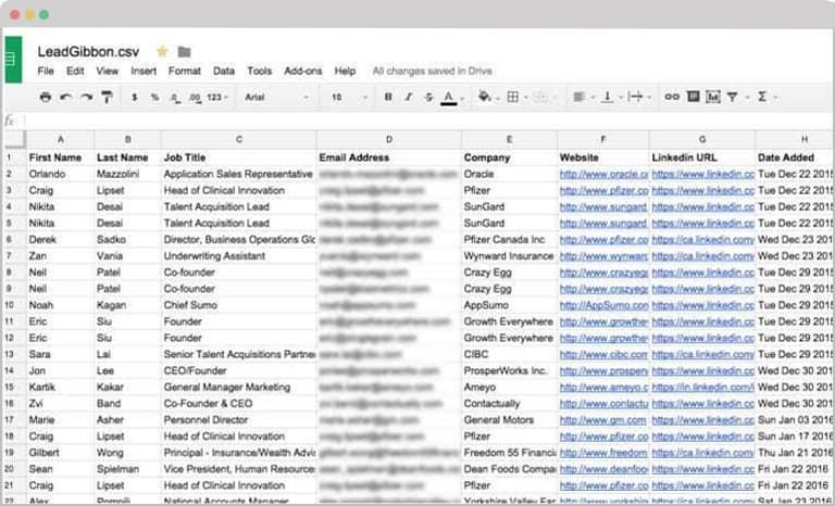 LeadGibbon Leads google sheets